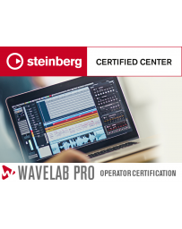 Wavelab on-line PRO Operator