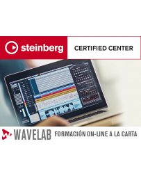 Wavelab on-line 5h